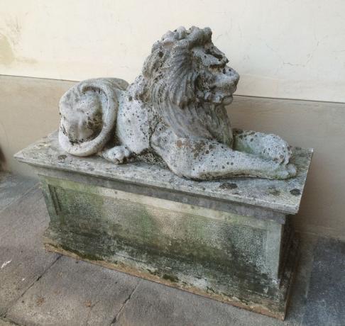 Scultura Leone in Cemento da Esterno del '900
