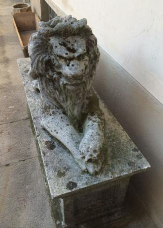 Frontale Scultura Leone in Cemento da Esterno del '900